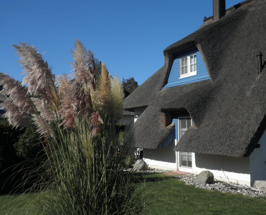 Reetdachhaus auf Usedom